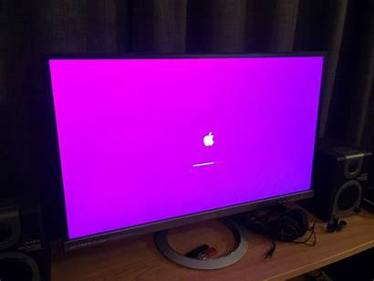 Mac Screen Pink Macos Startup Forums Update
