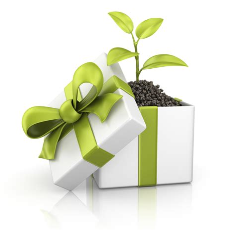 green gifts for christmas verdegreen