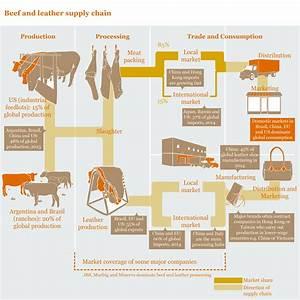 Orange Supply Chain Diagram