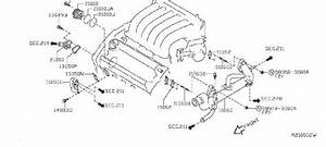 Nissan Altima Thermostat  Water Neck  Pump  Cooling