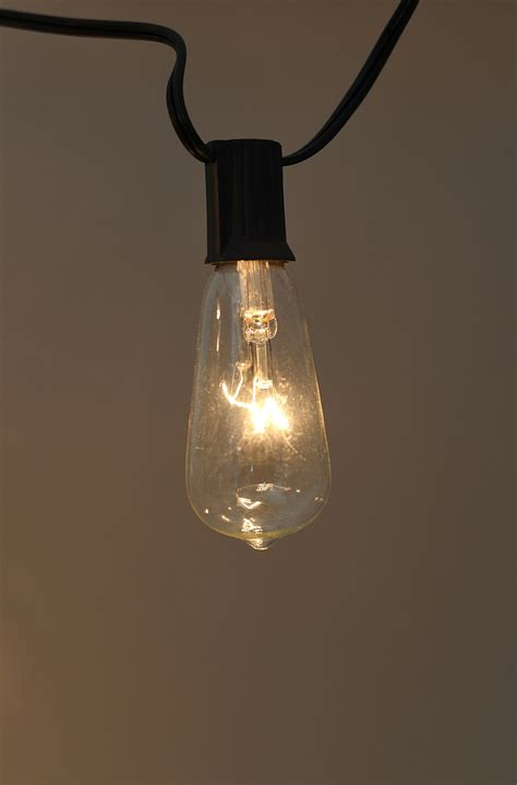 string lights with edison bulb lights warm white 9ft