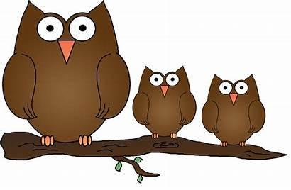 Owl Clipart Owls Clip Cartoon Wise Branch
