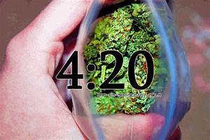weed gif on Tumblr