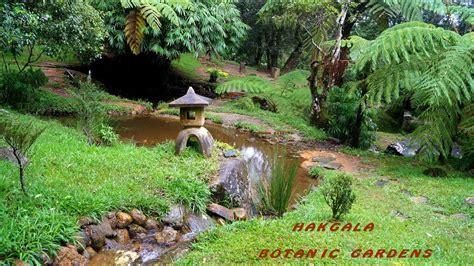 hakgala botanic gardens seetha amman temple  sri lanka