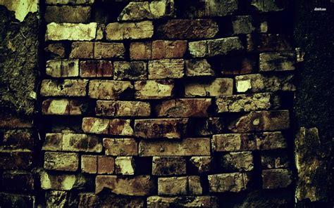 Photography Wallpaper For Walls Wallmayacom