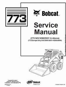 Bobcat 773 Skid