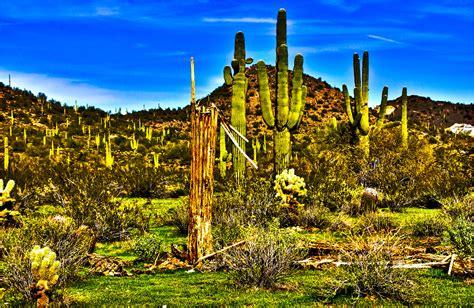 Top 10 Arizona Tourist Attractions  Arizona Tourism