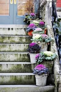 Günstig Garten Verschönern : garten deko ideen die garten oder haustreppe mit blumen dekorieren ~ Whattoseeinmadrid.com Haus und Dekorationen