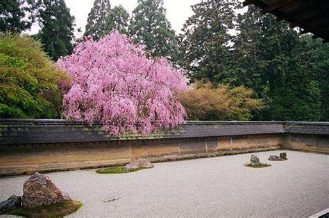 garden rock zen kyoto famous cherry ji blossom japan temple most ryan file finding ancient commons origins wikimedia history wikipedia