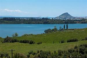 Land  Sections For Sale In Welcome Bay  Tauranga  Bay Of