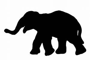 Elephant Silhouette Free Stock Photo - Public Domain Pictures