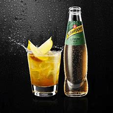 Looking For The Best Schweppes Cocktail? Try Now Our