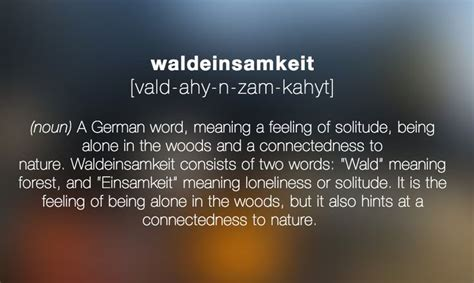 Waldenisamkeit (noun) A German Word, Meaning A Feeling Of