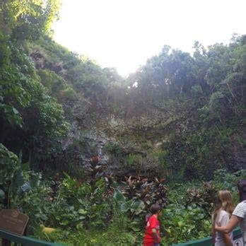Fern Grotto Kauai Boat Tours by Smith S Fern Grotto Tour 187 Photos 87 Reviews Tours
