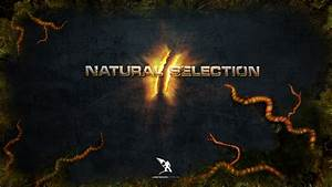 Natural Selection 2 Review Glitch Cat