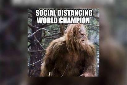 Quarantine Memes Comedy Break Need Today Disrn