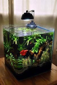 30 Best Ideas Aquarium Designs In The Living Room