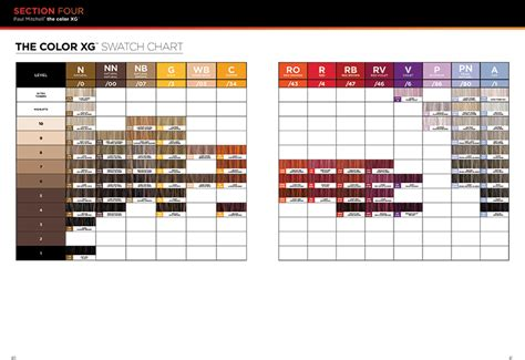 paul mitchell the color chart the color xg from paul mitchell 174