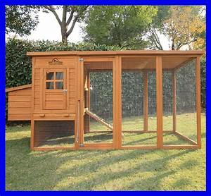 Pets Imperial U00ae Large 8ft 2 U0026quot  Chicken Coop Hen Poultry Ark