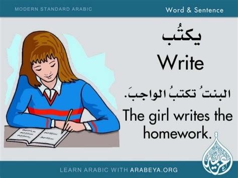 Word And Sentence (modern Standard Arabic