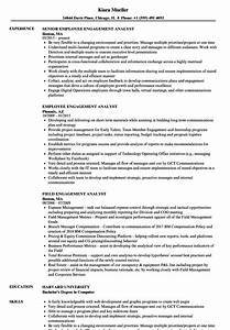 amazing employee engagement plan template contemporary With employee engagement manager resume
