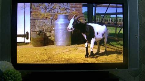 Big Barn Hd by Big Barn Farm Gobo S Imaginary Friend Episode Hd