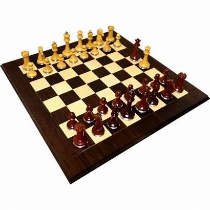 Chess Luxury Conqueror Padouk Bases Staunton Steel