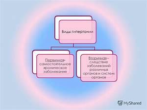 Гипертония гипотония признаки профилактика
