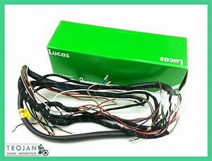 Wiring Harness  Lucas  For Triumph Tr6 T120 1960