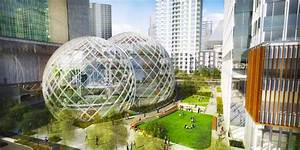 Amazon's giant glass domes are filled with endangered ...