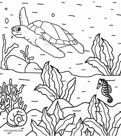 Coloring Nature Pages Printable Natural Adults Simple