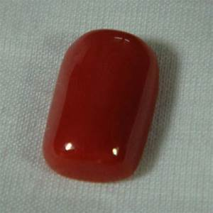 red coral stone india image search results