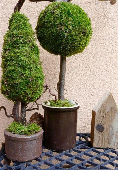 Weihnachtsdeko Baum Garten by Die Besten 25 Grabbepflanzung Winter Ideen Auf