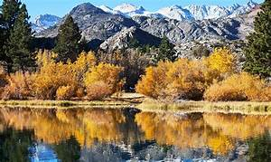Top 5 Foto Tipps und Ideen für schöne Herbstbilder: So