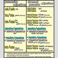Spanish Possessives  Google Search  Spanish  Pinterest  Spanish And Search