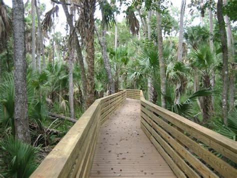 Hammock Area by Black Hammock Wilderness Area Seminole County