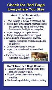 insect bites archives environmental spill control llc With bed bug safety