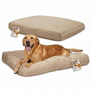 outstanding strong dog beds uk tough chew dog beds uk dog With strong dog beds for large dogs