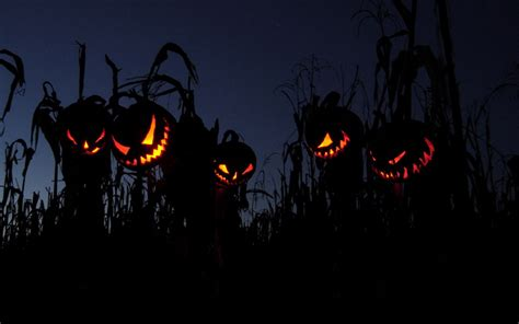 scary halloween wallpapers images  pictures backgrounds