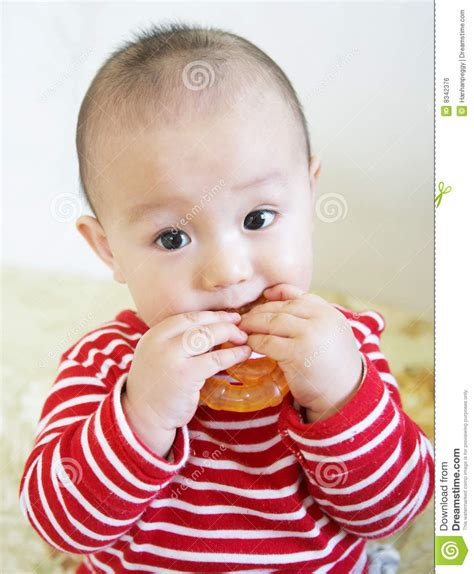 Teething Baby Bite Royalty Free Stock Image Image 8342376