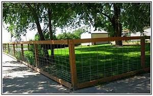 Diy dog fencing ideas my pets pinterest for Easy dog fence ideas