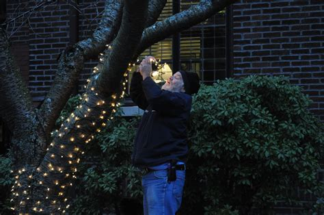 people who put up christmas lights who put up lights how to put up lights inside 10 steps