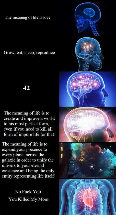 gotg  reference expanding brain   meme