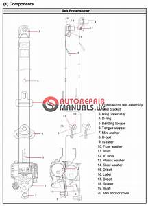 Free Download  Ssangyong Actyon C100 Service Manual
