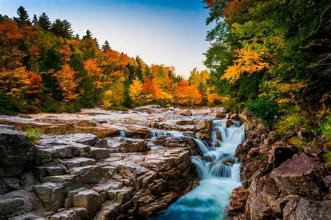 11 Best Road Trips To See Stunning Fall Foliage Reader's