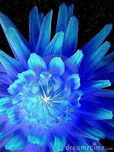 Luminous Neon Flower Royalty Free Stock Image Image