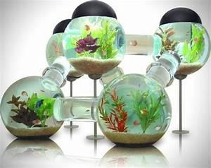 Aquarium Deko Ideen : die welt der fische aquarium kugel wasserpflanzen sand ~ Lizthompson.info Haus und Dekorationen