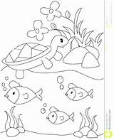 Pond Coloring Pages Habitat Animals Royalty Printable Arctic Template Animal Plants Getcolorings Getdrawings sketch template
