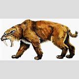 Prehistoric Predators Bear Dog | 1700 x 892 jpeg 429kB