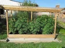 Gewächshaus Für Tomaten Selber Bauen : bildergebnis f r tomatenhaus selber bauen garten pinterest tomatenhaus selber bauen ~ Markanthonyermac.com Haus und Dekorationen